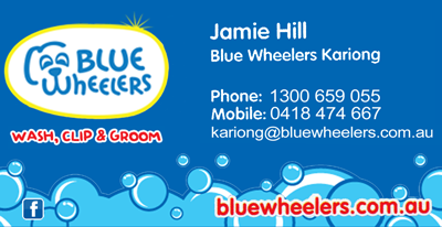 http://bluewheelers.com.au/mobile-dog-grooming/woy-woy-nsw